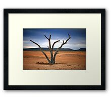 Outback NSW Framed Print