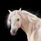 Pretty Palomino by Michelle Wrighton