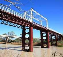 North Bourke Bridge by dmbphotography