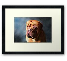 Stormy Dogue Framed Print