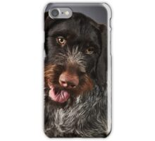 German wire-haired pointer iPhone Case/Skin