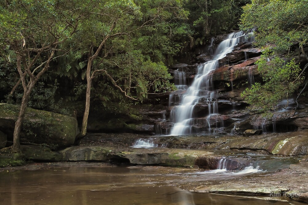 Somersby Falls - Solitude by Kim Roper