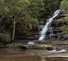 Somersby Falls - Solitude by Kim Roper