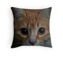 Tigress Lulu Throw Pillow
