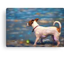 Jack Russell Terrier at the Beach Canvas Print