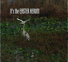 Not photoshopped Easter Heron by sandhill