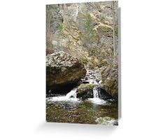 Bear Creek II  Greeting Card