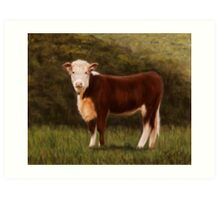 Hereford Heifer Art Print