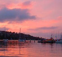 Serenity - Middle Harbour, Sydney Harbour Australia by Philip Johnson
