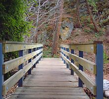Foot Bridge by Gregory Ewanowich