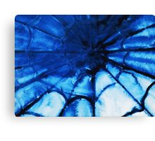 Abstract watercolor painting, spider's web Canvas Print