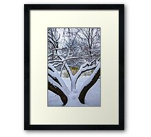 Welcoming Limbs Framed Print