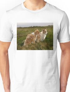 Border Collies in the field Unisex T-Shirt