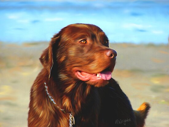Bosco at the Beach by Michelle Wrighton