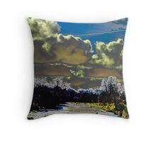 THE SUN MOON AND WATER Throw Pillow