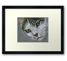 Tara - White and Tabby Cat Painting Framed Print