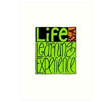 Life Experience Art Print