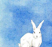 Rabbit Blue by Mariana Musa