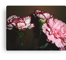 Two plus One Canvas Print