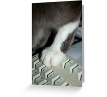 Pussyfoot on the Keyboard Greeting Card