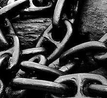 The Weakest Link by Darlene Ruhs