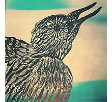 she's a bird Photographic Print