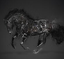 Horse 1 by pulssart