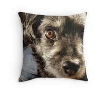 Little Mad Dog Throw Pillow