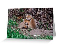 Fox Kit 7 Greeting Card