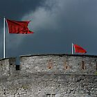 """Munster Flags"" over King Johns Castle by Gerard  Horan"