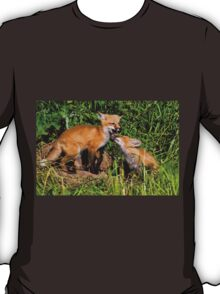 Fox Kits 3 T-Shirt