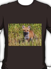 Fox Kit 2 T-Shirt