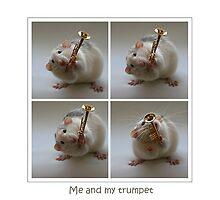 My trumpet. by Ellen van Deelen