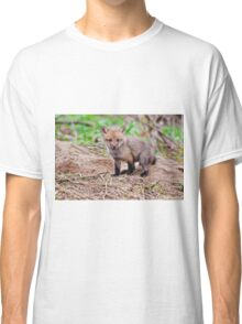 Fox Kit on Den - Ottawa, Ontario Classic T-Shirt