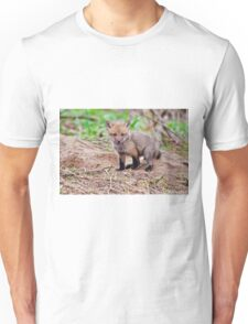 Fox Kit on Den - Ottawa, Ontario Unisex T-Shirt
