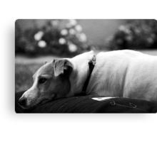 mickey in deep thought Canvas Print
