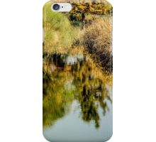 112014 reflections iPhone Case/Skin