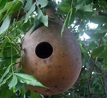 Gourd Birdhouse by Wanda  Mascari