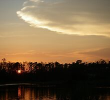 Orange Sky Over Bayou Liberty by Wanda  Mascari