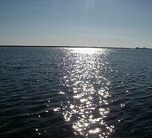 Sunrise on Lake Pontchartrain by Wanda  Mascari