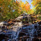 Autumn Carolina Colors by Jason Anderson
