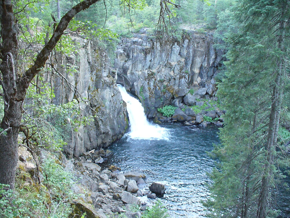 McCloud River, CA, Lower Falls by sunshinesw8