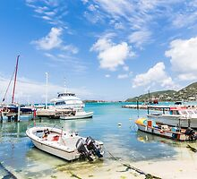 Boats in Tropical Harbor.jpg by dbvirago