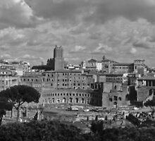 Roma by Luis Gervasi