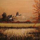 Mallards at Dusk by Rich Summers