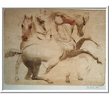 """""""Study of the Horses"""" Photographic Print"""
