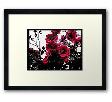 Lifecycle of the Rose Framed Print