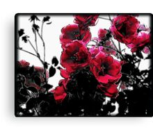 Lifecycle of the Rose Canvas Print