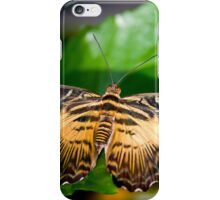 Clipper Butterfly iPhone Case/Skin