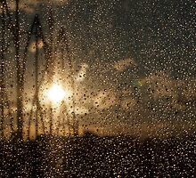 Sunset Through Screen by Keith Vander Wees